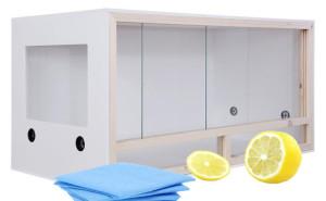 Terrarium Reinigung mit Zitrone