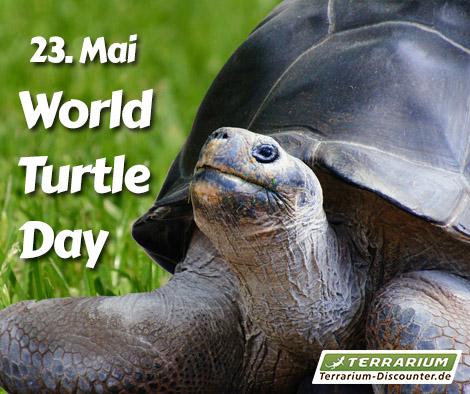 Welt Schildkröten Tag
