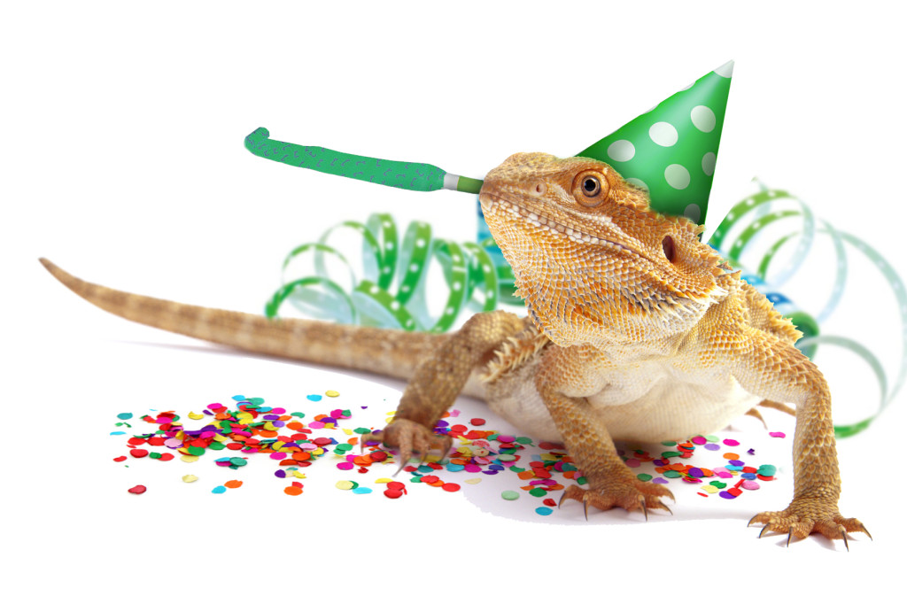 Party_Bartagame