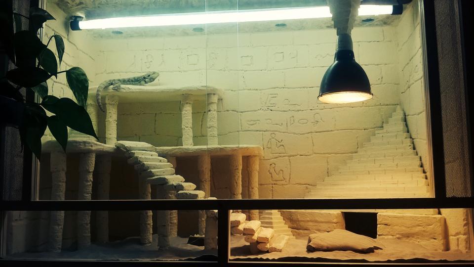 Holzterrarium