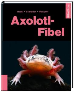 Hoerdt_Schneider_Weinzierl_Axolotl_Fibel